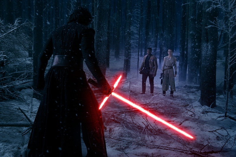 Datei:Konfrontation im Wald.jpg